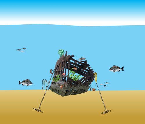 clicca per ingrandire Ripopolamento e costruzione habitat artificiali subacquei marini costieri fluviali, lagunali www.ntanet.it